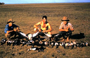 Bird shooting in the Territory